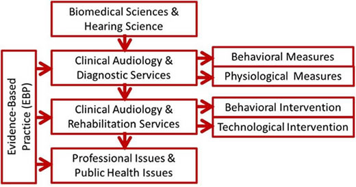 Audiology Curriculum Flow Chart